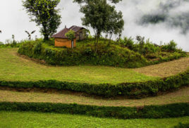 Responsible investment to combat land degradation emerges from Dragons' Den
