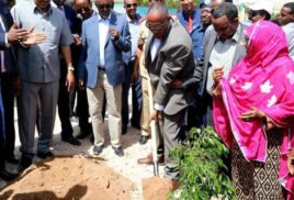 Somaliland president launches new annual reforestation day