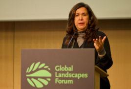 U.N. decade of ecological restoration would mobilize cost-effective action: El Salvador's Lina Pohl