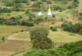 Retaining forests  benefits African farmers, new study finds