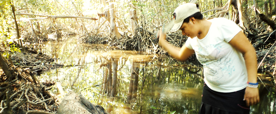 El Salvador's ecosystem restoration model that prioritizes the environment