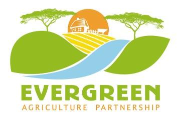 Large-Scale Smallholder Farm Carbon Abatement Program by Conservation International
