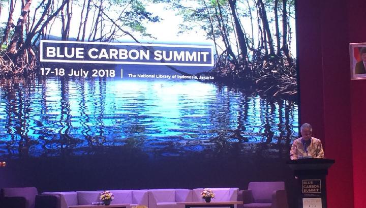 Apa itu Blue Carbon? Ini Penjelasannya
